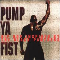 Pump Ya Fist: Hip-Hop Inspired by the Black Panthers von Various Artists