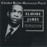 Sky Is Crying von Elmore James