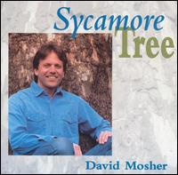 Sycamore Tree von David Mosher