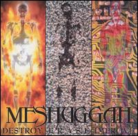 Destroy Erase Improve von Meshuggah