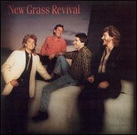 Hold to a Dream von New Grass Revival