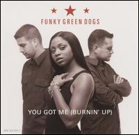 "You Got Me Burning Up [CD/12""] von Funky Green Dogs"