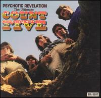 Psychotic Revelation: The Ultimate Count Five von The Count Five