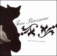 What I Mean to Say Is Goodbye von Tom Brosseau