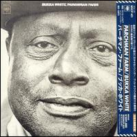Parchman Farm Blues von Bukka White
