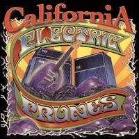 California von The Electric Prunes