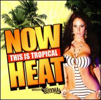 Now This Is Tropical Heat von DJ Buddha