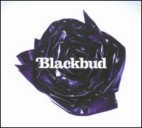 Blackbud von Blackbud